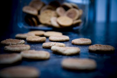 Snickerdoodles Are Not Related to Snickers: Why Did I Not Know This?