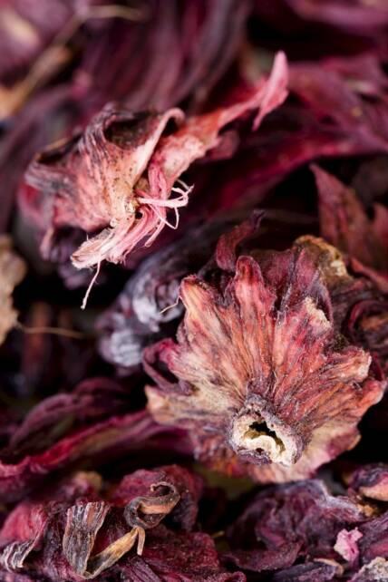 Hibiscus Tea 01