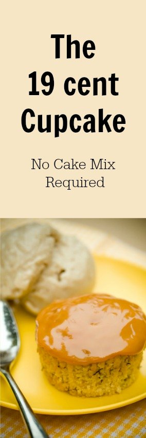 The 19 Cent Cupcake – No Box Mix or Canned Frosting Required