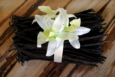 Small Business Saturday – Vanilla Bean Giveaway and Coupon Code