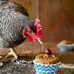 Chicken Cupcakes
