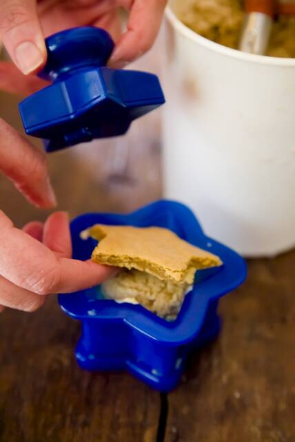 Tovolo Ice Cream Sandwich Maker